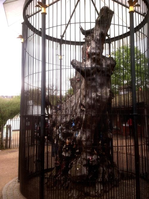 Elfin-tree